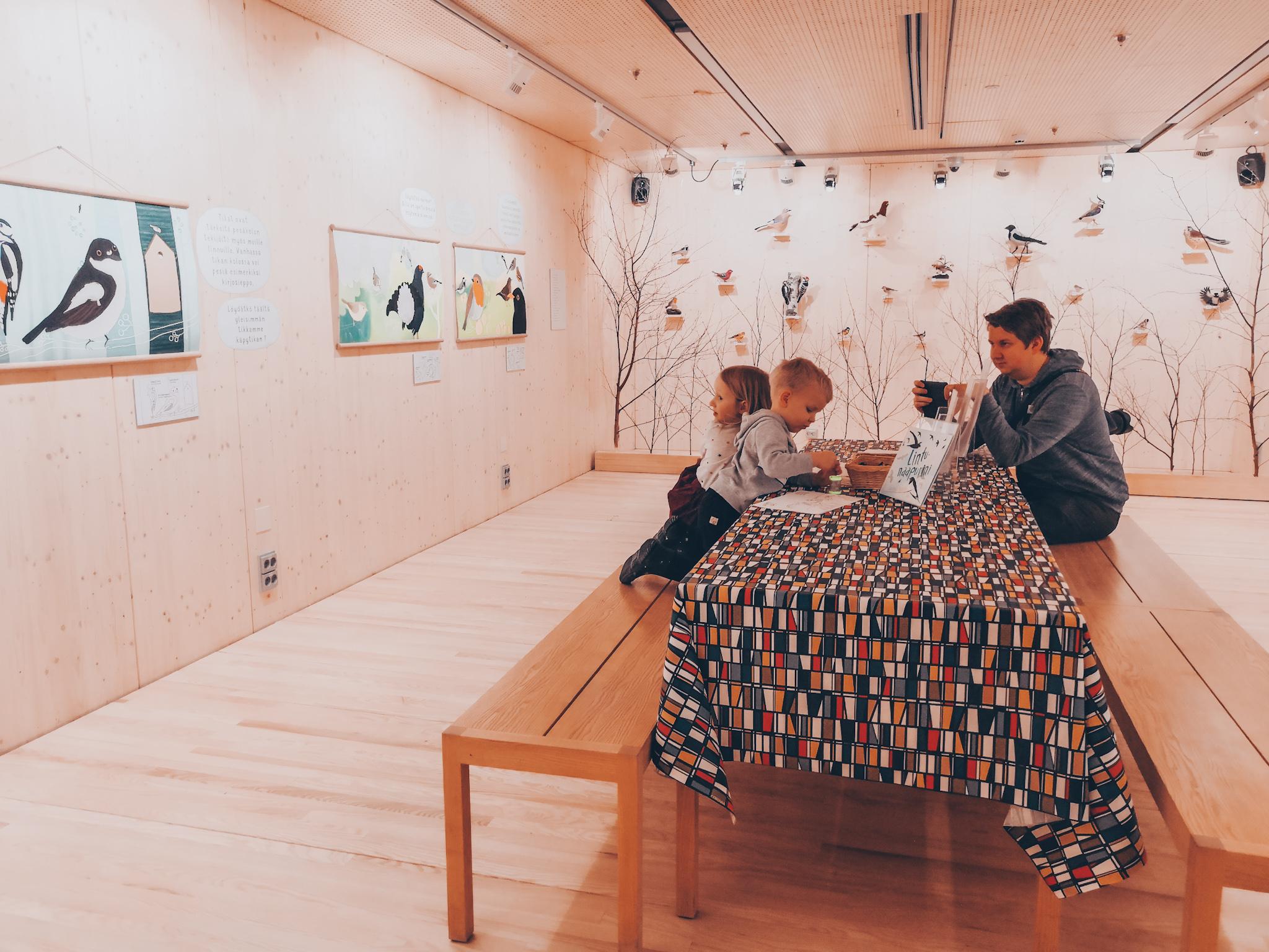 suomen luontokeskus haltia lintu näyttely