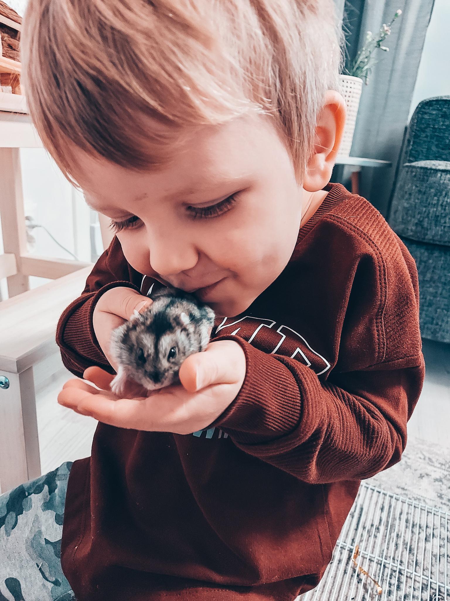 lapset ja hamsteri